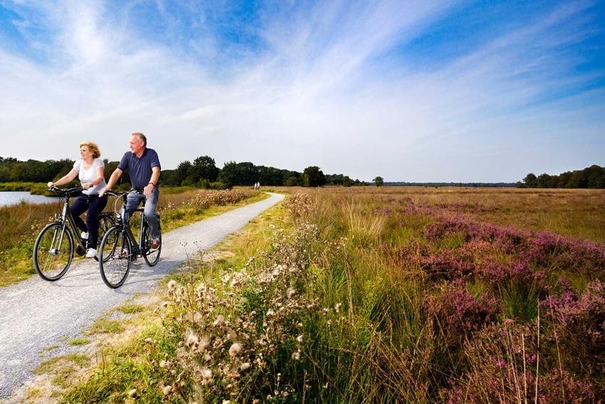 fietsroutes-drenthe-westerbergen